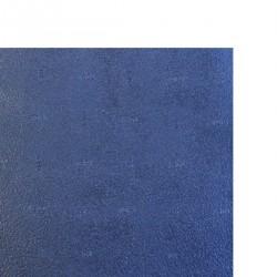TOPSEM 2.5 mm PLAQUE 96x60